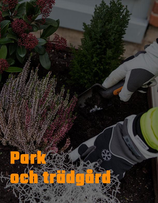 Park och trädgård